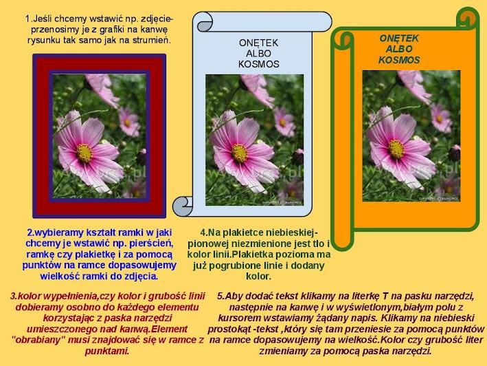 Przeglądasz zdjęcia z artykułu: Kompozycje graficzne - Grudzień 2011