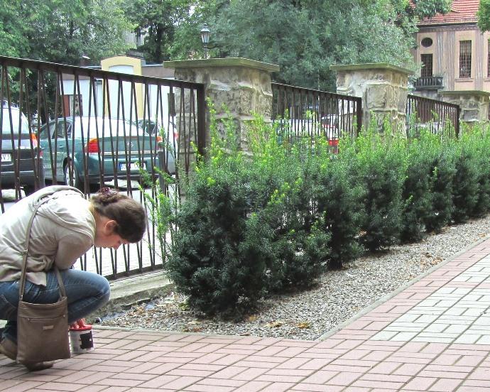 Przeglądasz zdjęcia z artykułu: Warsztaty międzypokoleniowe 30-31.07.2012